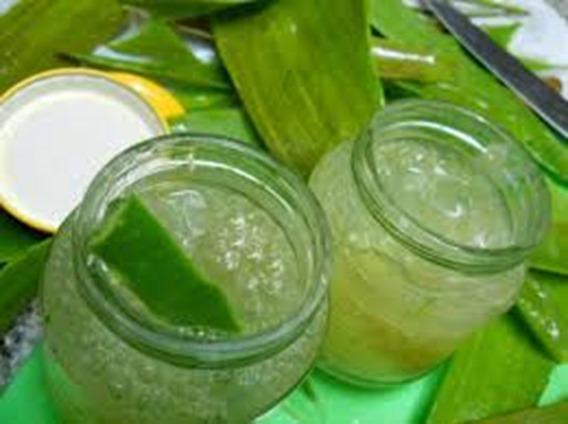 Cpsulas verde, forma de bajar de peso rapido inyecta mediante